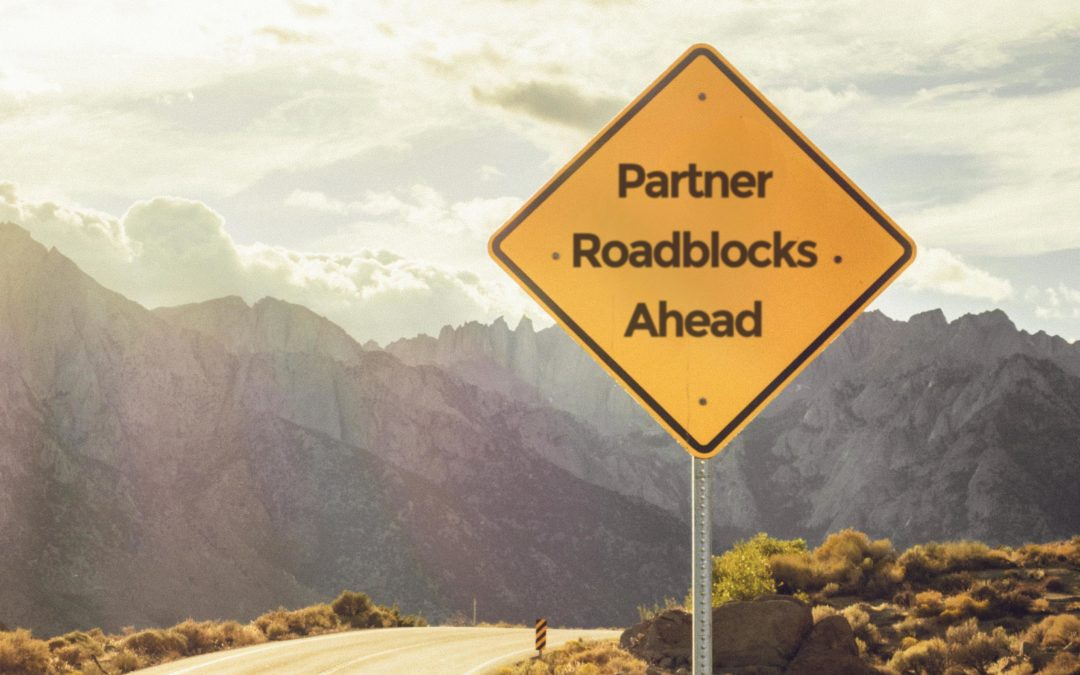 Top 3 Roadblocks in Modern Successful Partner Ecosystems